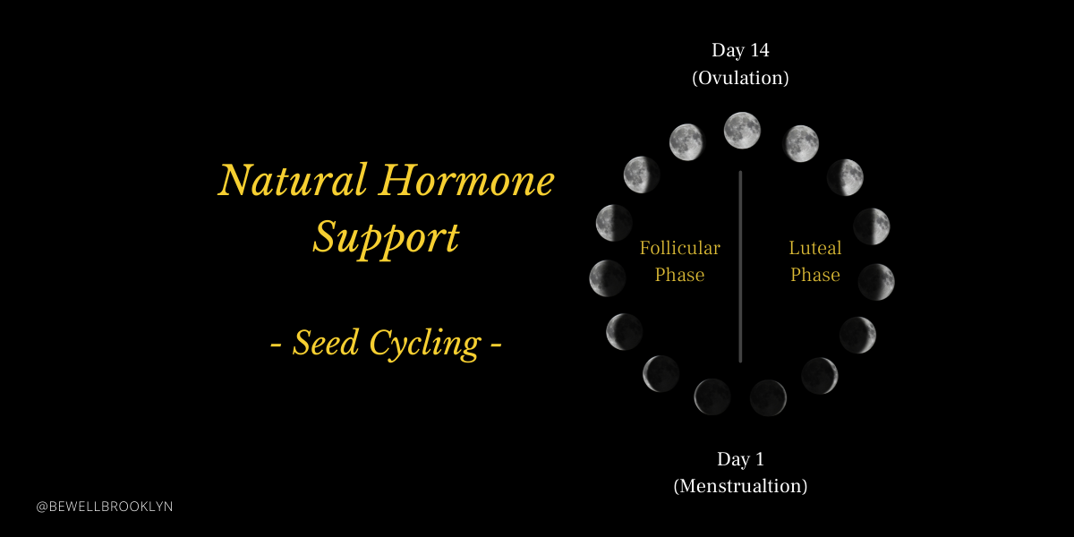 FeaturedImage_1200x600_SeedCycling2